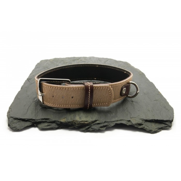 Collier chien sellier poil sable